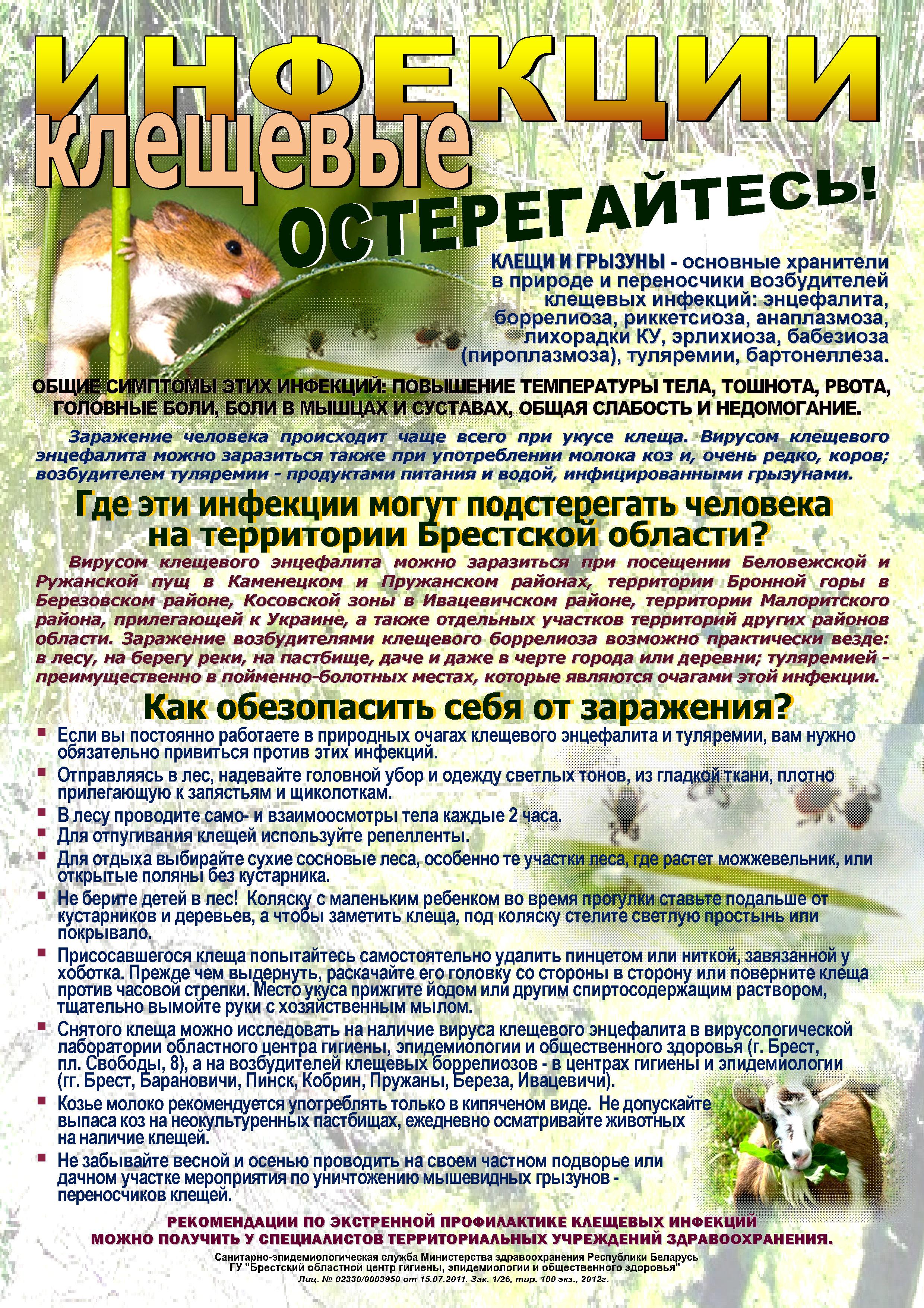 Картинки по запросу Клещевые инфекции и памятки в Республике Беларусь